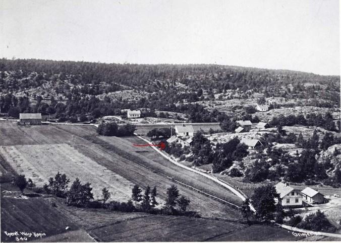 Grimestad 1903